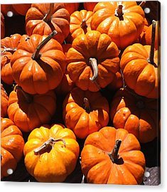 Acrylic Print featuring the photograph Mini Fall Pumpkins by Denyse Duhaime