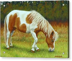 Acrylic Print featuring the pastel Mini Mare Pastel by Margaret Stockdale