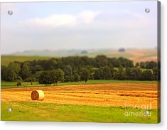 Miniature Countryside Acrylic Print by Vicki Spindler