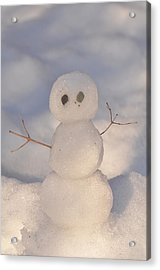 Miniature Snowman Portrait Acrylic Print by Nancy Landry