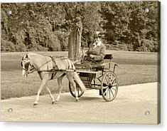 Miniature Two Wheel Cart Acrylic Print by Wayne Sheeler