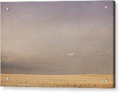 Minimalist Landscape Of A Prairie Grain Acrylic Print by Roberta Murray