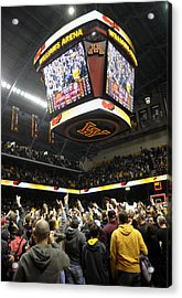 Minnesota Fans Celebrate Victory At Williams Arena Acrylic Print by Replay Photos