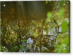 Minnow Creek Acrylic Print by Russell Christie