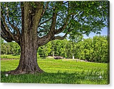 Minute Man National Historical Park  Acrylic Print by Edward Fielding