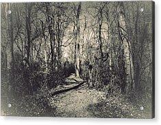 Mirkwood Acrylic Print