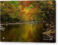 Acrylic Print featuring the photograph Mirror Fall Stream In The Mountains by Debbie Green