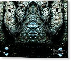 Mirror Mirror On The Wall Acrylic Print by Andy Prendy