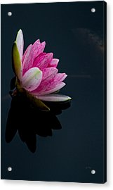 Mirror... Mirror On The Water Acrylic Print by Eti Reid