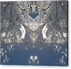 Mirror Of Snow  Acrylic Print