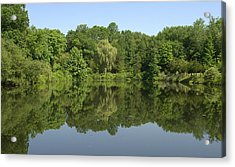 Mirrored Acrylic Print