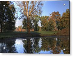 Mirrored Pines Acrylic Print