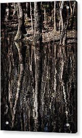 Acrylic Print featuring the photograph Mirrored Trees by Zoe Ferrie