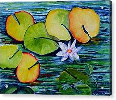 Whimsical Waterlily Acrylic Print