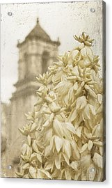 Mission San Jose And Blooming Yucca Acrylic Print
