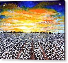 Mississippi Delta Cotton Field Sunset Acrylic Print