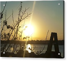 Acrylic Print featuring the photograph Mississippi River Sunset by Ray Devlin