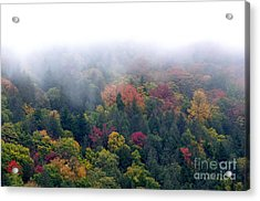 Mist And Fall Color Acrylic Print by Thomas R Fletcher