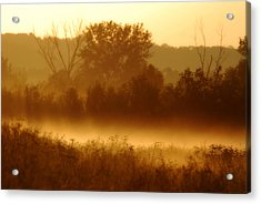 Mist Burning Off The Field Acrylic Print by Kimberleigh Ladd