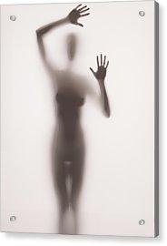 Mist Acrylic Print by Gabriela Slegrova