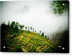 Mist In Mountain Himalayas Color Acrylic Print