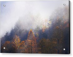 Mist In Mountains Acrylic Print by Dorothy Walker