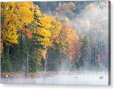 Mist Over Fly Pond Acrylic Print