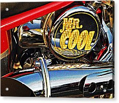 Mister Cool  Acrylic Print by Chris Berry