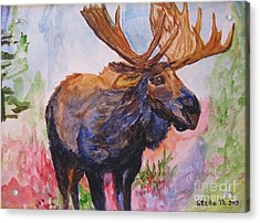 Mister Moose Acrylic Print