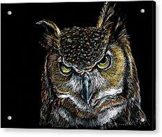 Mister Owl Acrylic Print