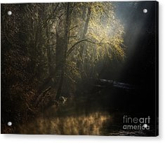 Acrylic Print featuring the photograph Misty Creek by Inge Riis McDonald