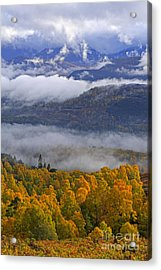 Misty Day In The Cairngorms Acrylic Print by Louise Heusinkveld