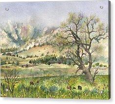 Misty Flatirons Acrylic Print by Anne Gifford
