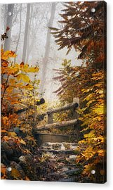 Misty Footbridge Acrylic Print by Scott Norris