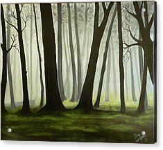 Misty Forrest Acrylic Print by Dan Wagner