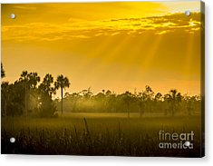 Misty Glade Acrylic Print by Marvin Spates