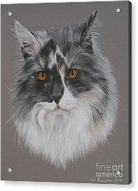 Misty Acrylic Print by Joanne Simpson