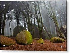 Misty Acrylic Print by Jorge Maia