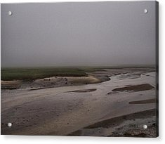 Misty Marsh Acrylic Print