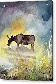Misty Moose Minerva Acrylic Print