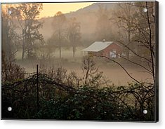 Misty Morn And Horse Acrylic Print by Kathy Barney