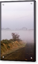 Acrylic Print featuring the photograph Misty Morn by Liz  Alderdice