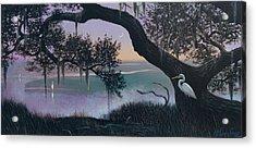 Misty Morning At Seabrook Acrylic Print by Blue Sky