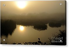 Misty Morning In The Marsh Acrylic Print