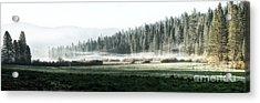 Misty Morning In Yosemite Acrylic Print by Jane Rix
