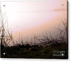 Acrylic Print featuring the photograph Misty Morning by Robyn King