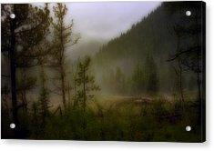 Acrylic Print featuring the photograph Misty Mountain by Ellen Heaverlo