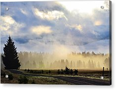Misty Spring Morning Acrylic Print by Annie Pflueger