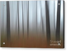 Acrylic Print featuring the photograph Misty Thoughts by Simona Ghidini