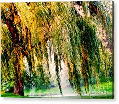 Misty Weeping Willow Tree Dreams Acrylic Print by Carol F Austin